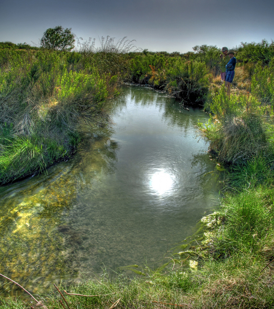 Carlsbad New Mexico - Reflecting on the Black River